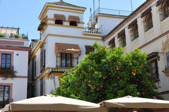 Hostal Hostería del Laurel